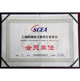 上海跨境电子商务行业协会会员