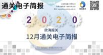 2020年12月通关电子简报(瀚而普)