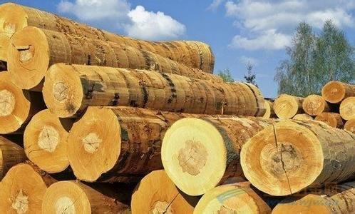 木材进口外贸代理就选瀚而普